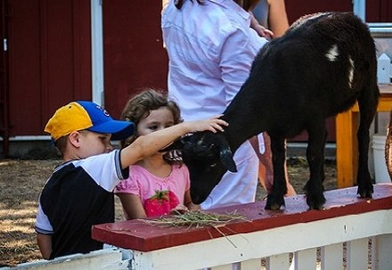 Boy and girl petting goat